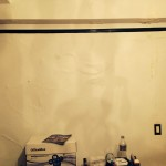San_Jose-mold-damage